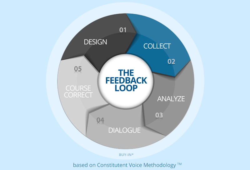 Feedback Loop - Collect